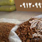 mamra cluster almonds