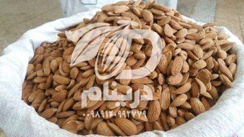Mamra almond Wholesale production