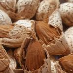 Buy Iranian quality paper almonds