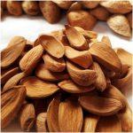 Nutex Company, exporter of Iranian Mamra almonds