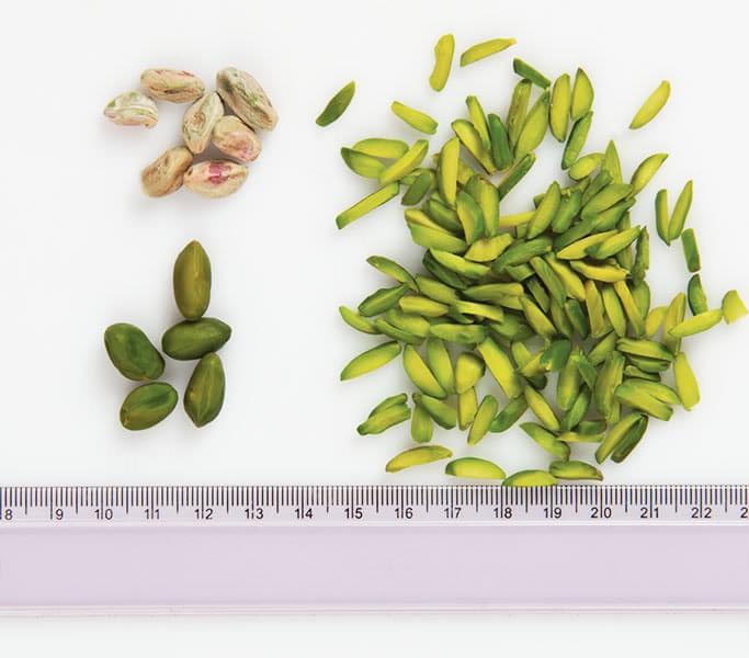 Exporter company of green pistachio slices