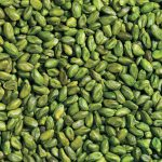 Green Pistachio Kernel Supplier and Exporter