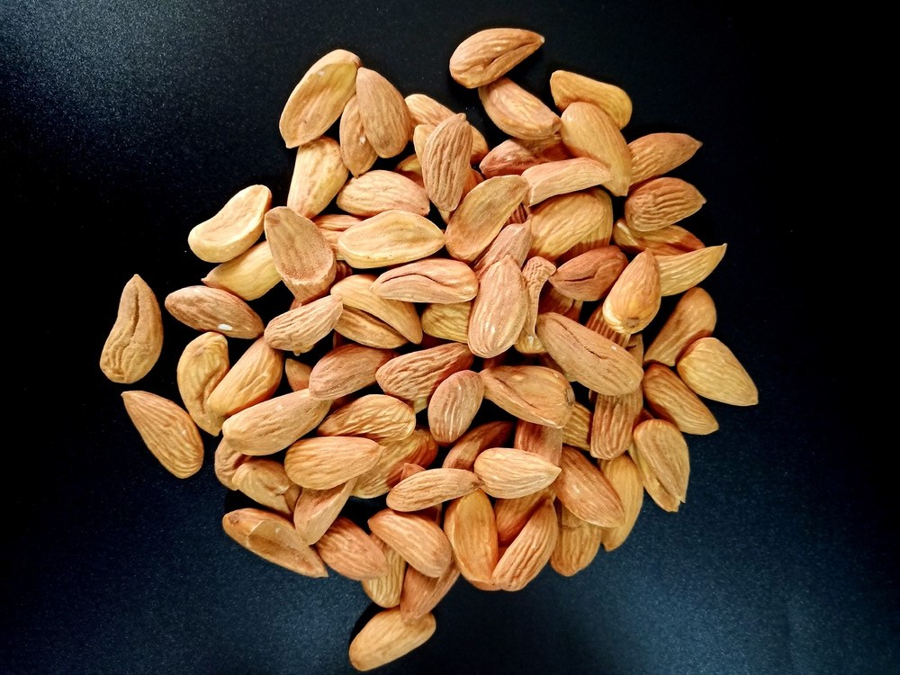The Largest Supplier Site for Major Mamra Almonds